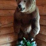 Lori's Grizzlie