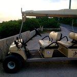 Large Cart #6
