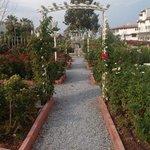 nice walk around gardens