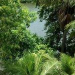 Da varanda do quarto uma linda vista para o Rio.