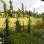 View of golf course from our room.
