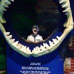 Jake having fun at the zoo :)