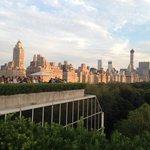 Met museum rooftop view