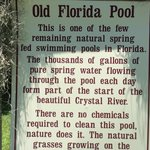 Unique Old Florida Pool
