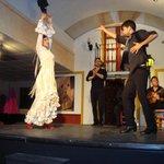 Beautiful flamenco