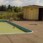 Algea pool