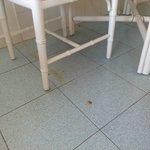 Impacts et rouille au sol