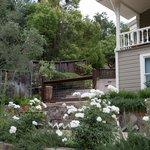 Chanric Garden's
