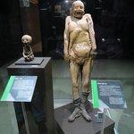 múmias