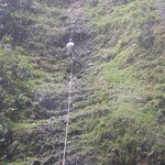 rappelling next to the waterfall
