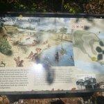 Sandfly Island