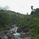 murti river near rocky island