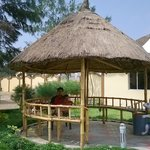 small shaded gazebo to sit / play around and spend time