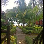 Path from our Bungalow