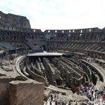 Arena  photo2
