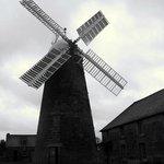 Callington Mill, Oatlands
