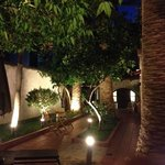 Incantevole giardino da Pepi Studios