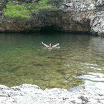 swimming in the cove