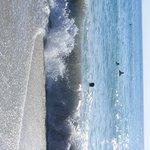 plaża Kleopatry