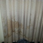 disgusting curtain