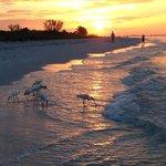 sunrise on the beach outside Ocean's Reach