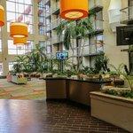 Atrium area