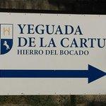 Cartel de la entrada