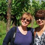 Enjoying Vineyards and Wine