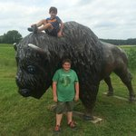 Brett and Brandon just had to climb the bison..sorry!