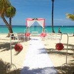 Nice wedding(s)