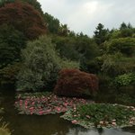 Stunning Gardens at Mount Stuart