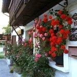 Notre façade fleurie