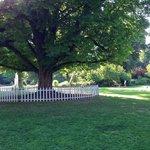 Parc de la Planchette