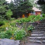 jardin doris