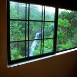 falls from bedroom window