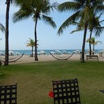 Hammocks along beachfront