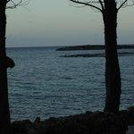 Sand Bars off Private Island