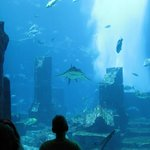 The view into lost world of Atlantis