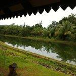 Vue du Flat-House=> Canal réserve d'eau selon le principe:CGH:Clean,Green,Healthy.