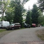 The majority of the campground looks like this, or two campers deep.