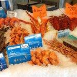 banc de crustacees