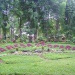 La Mesa Ecopark Garden