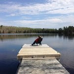 Relaxing on the Dock overlooking Farm Lake