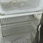Frig/Freezer with Moldy Towels to Catch Leaks