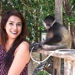 Con el mono de la entrada :)