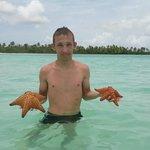 Натуральный бассейн с морскими звездами