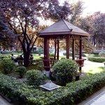 Pavilion in garden