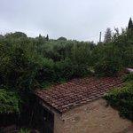 Foto di Podere le vigne
