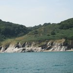 Great views of the Devon coast, we were even lucky enough to spot dolphins