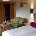 Zimmer Nival